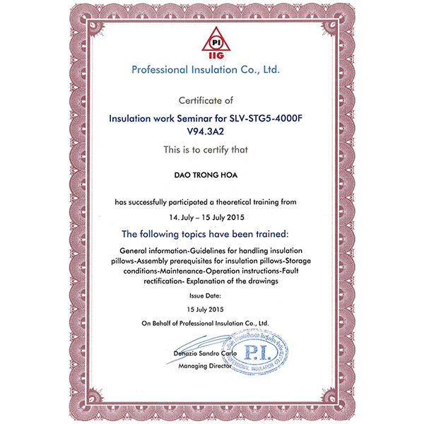 Professional Insulation certificate